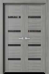 Двустворчатая дверь T10