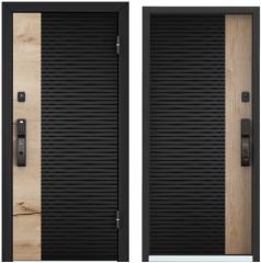 Дверь TOREX CYBER ЛКП глубокий чёрный / ЛКП глубокий чёрный CBR-01